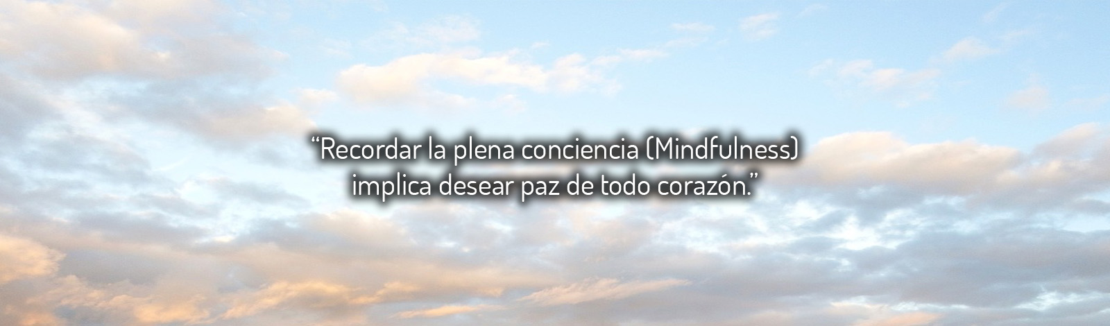 05slider-especialistas-mindfulness