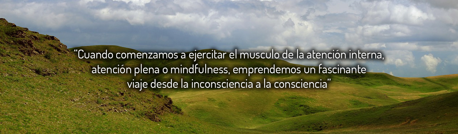 13slider-especialistas-mindfulness